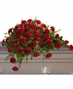 Casket Covers