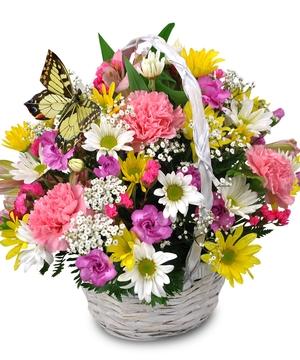 Sweet Butterfly Basket